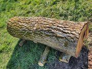 Nussbaumstamm Furnierholz