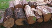 Kaminholz Brennholz Feuerholz Eichenstämme 1