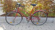 Fahrrad Rad 28 Zoll rot