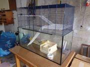 Kleintierheim Mäuse und Hamsterheim mit