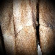 Damenpelz Mantel gr 38-40