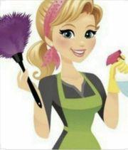 Reinigungskraft für Singelhaushalt gesucht in