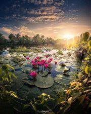 Paradiesgarten schöner wohnen