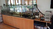 Aquarium Wasser-Schildkröten Zubehör
