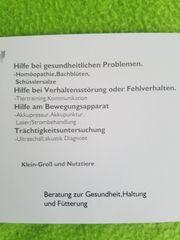 Tierheilpraxis Pia Hoffmeister