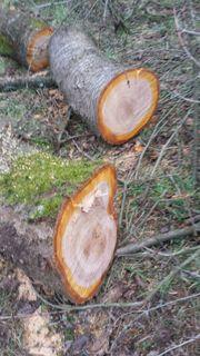 Kirschbaum Stamm, Drechselholz,