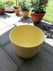 BLUMENTOPF groß Keramik