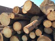 Brennholz zum selber schneiden