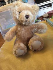 Teddybär zu verkaufen
