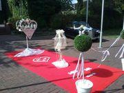 Weisse Hochzeitstauben Köln-Düsseldorf-Solingen-Leverkusen-Mönchengladbach-Bonn-Krefeld-Wuppertal