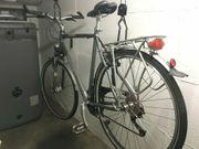 Fahrrad - Trekking Bike - Pegasus Premio