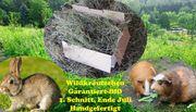 Kaninchenheu - Genuß pur Heu für