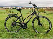 Raleigh Premium Alu-Fahrrad 28 24