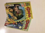 Conan der Barbar - Taschenbuch Softcover