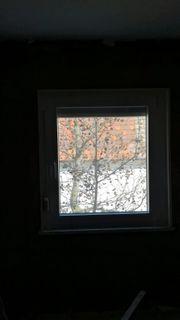 Fenster diverse Größen