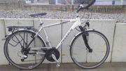 Fahrrad Trekking Herren Marke Pegasus