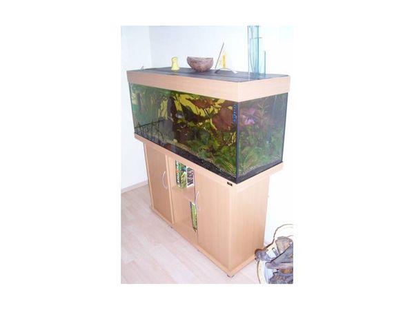 Juwel Aquarium Rio 240 mit