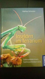Buch Insekten im Terrarium