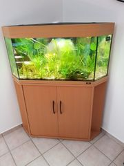 Hochwertiges 150 Liter Aquarium