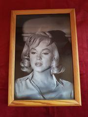 Marilyn Monroe Bilder im 11er