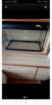 Fischglas