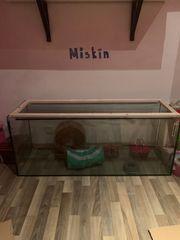 Kleintier Käfig Terrarium Aquarium