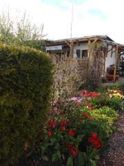 Pachtgarten in Kleingartenanlage Niederwuerschnitz zu