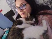 Katze Mimi ruhig sucht ein