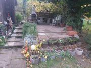 KAUF oder PACHT Garten gesucht