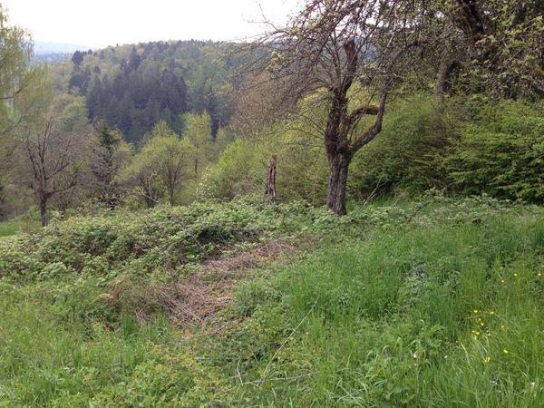 Wochenendgrundstück Aichwald für Wochenendhaus