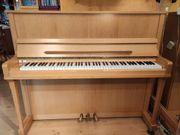 Schönes Einsteiger-Klavier