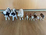 Schleich Kühe Bulle Kälbchen und