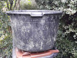 Kübel Blumenkübel Topf riesengroß Kunststoff: Kleinanzeigen aus Reutlingen - Rubrik Sonstiges für den Garten, Balkon, Terrasse