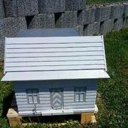 Weihnachtsgeschenk Bienenvolk auf einer Zarge