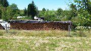 Brennholz 1Ster max 33cm lang