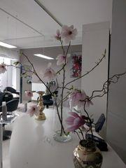 Stuhlvermietung Raumvermietung in einem BeautyStudio