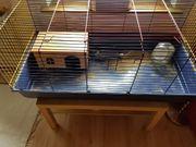 Kaninchen Zubehör Käfig