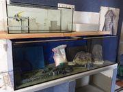 Aquarium 720 ltr
