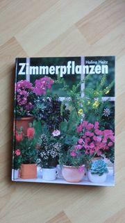Zimmerpflanzen von Halina Heitz