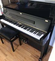 Klavier W Hoffmann V120