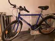 Fahrrad Power von Pegasus 21-Gang