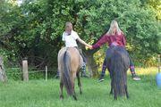 Reitbeteiligung Reiter suchen Pferde