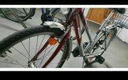 KTM Damen Fahrrad 26 Zoll