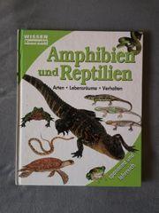WISSEN Kompakt Amphibien und Reptilien