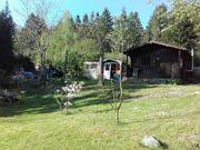 Sonniges Freitzeit- Gartengrundstück in Brandau