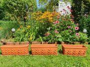 Blumenkästen Ton terracotafarben mit Untersetzer