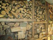 Brennholz Buche ca 7 m³