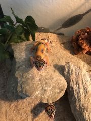 Leopardgecko Baby s High Yellow