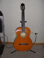Fleißige Mitstreiter beim Gitarre lernen