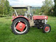 Oldtimer Traktort Massey Ferguson MF